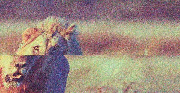 NÄKTERGAL #2: Abjekt | Ekolali | Helena Jureén